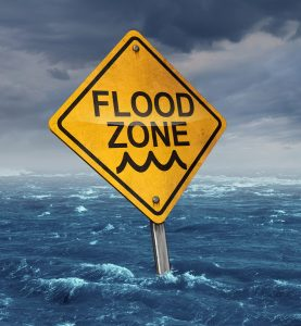 Flood Insurance Quotes Awesome Five Brothers Insurance  Flood Insurance Quote  Tampa  St