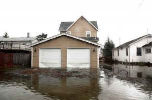 Flood Insurance Companies