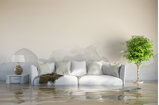 flooded room with sofa