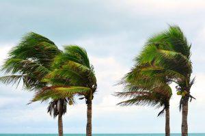 hurricane insurance in florida