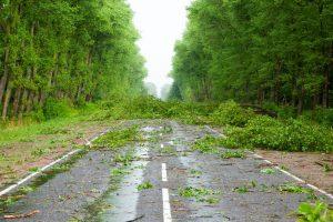 hurricane insurance cost